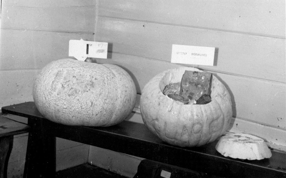 Iron weights can be seen inside a cheating pumpkin on the right