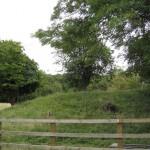 2013 08 13 Visit to Walkernbury Castle 01