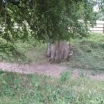 2013 08 13 Visit to Walkernbury Castle 06