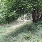 2013 08 13 Visit to Walkernbury Castle 18