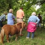 2013 08 13 Visit to Walkernbury Castle 26
