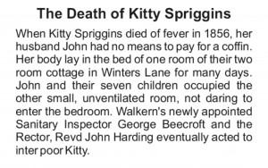 Board D Kitty Spriggins