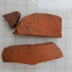 Finds from Dovehouse test pit 11