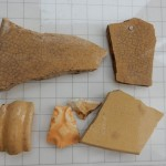 Finds from Dovehouse test pit 12