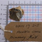 WKN 19-2-3 finds 12 core trimming flint