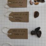 WKN 19-2-4 finds 01