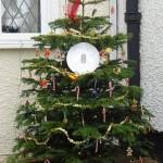 8. Christmas Treet (6 Froghall)