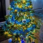 11. Elementree, my dear Santa (6 Brockwell Shott)