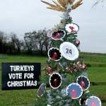 24. Turkeys Vote for Xmas (Stableyard Kitchen, Stevenage Rd)